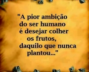 Pequenas Frases (4)