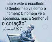 Sabedoria de Deus Frases (2)