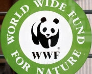 wwf-world-wide-fund-for-nature-2